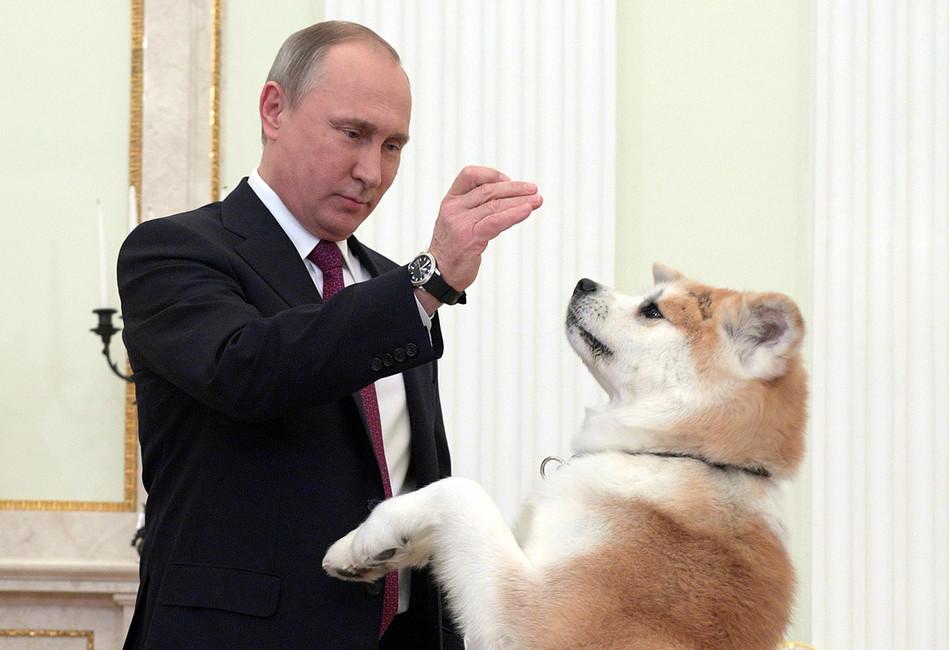 Фото: Алексей Дружинин/ пресс-служба президента РФ/ ТАСС