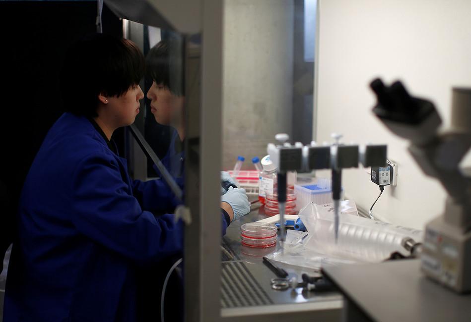 Выращивание раковых клеток влаборатории вОксфорде. Фото: Peter Nicholls/ Reuters