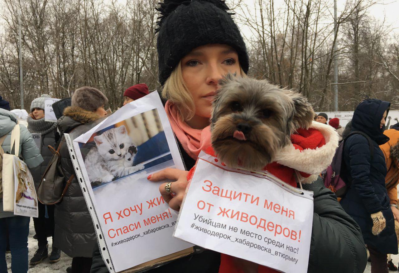 Фото: Тася Никитенко / Открытая Россия