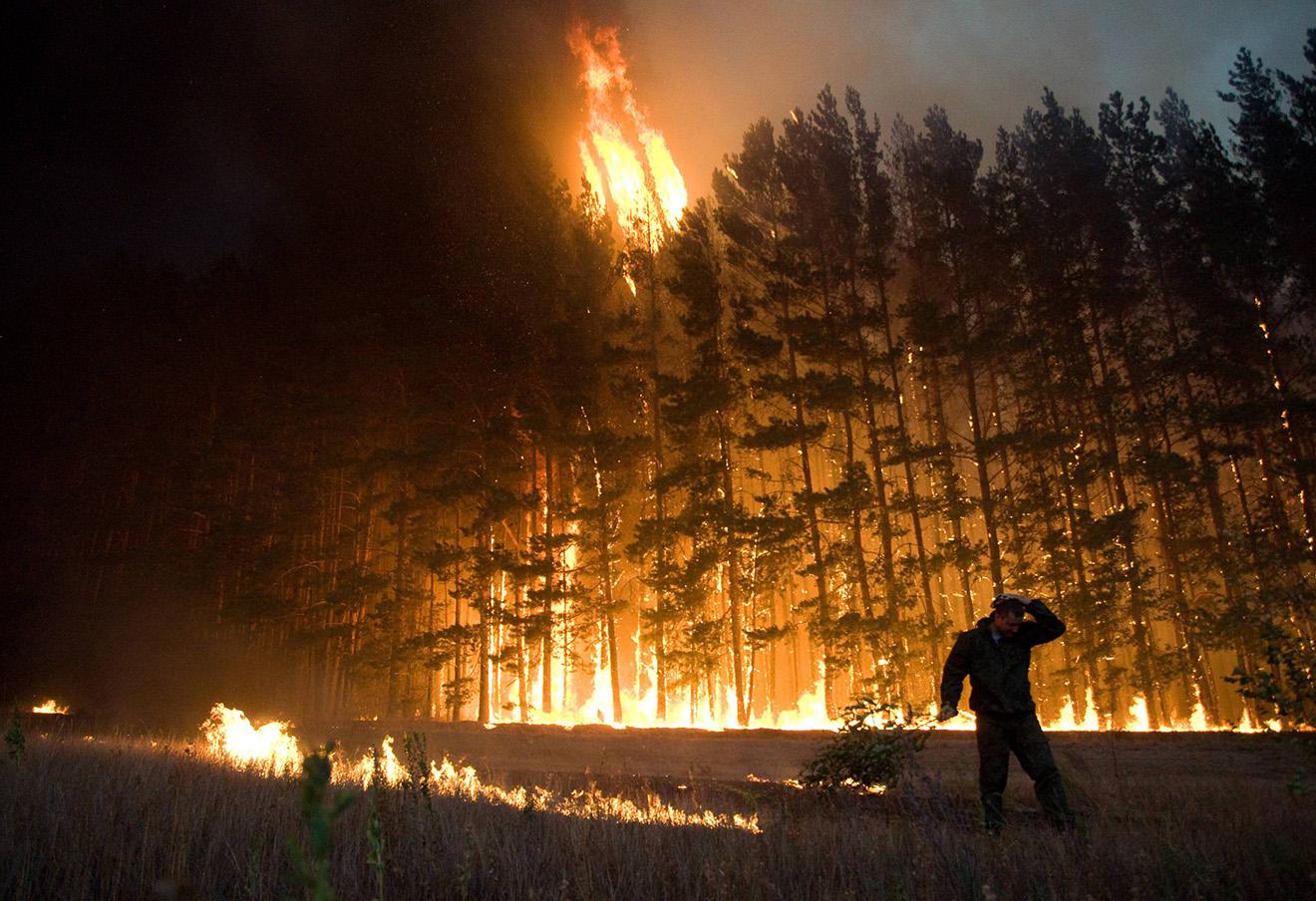 Лесные пожары летом 2010 года. Фото: AP / East News
