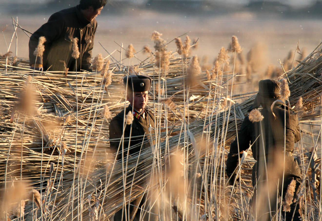 Северокорейские солдаты работают в поле в Синыйджу на границес Китаем, 6 января 2016 года.