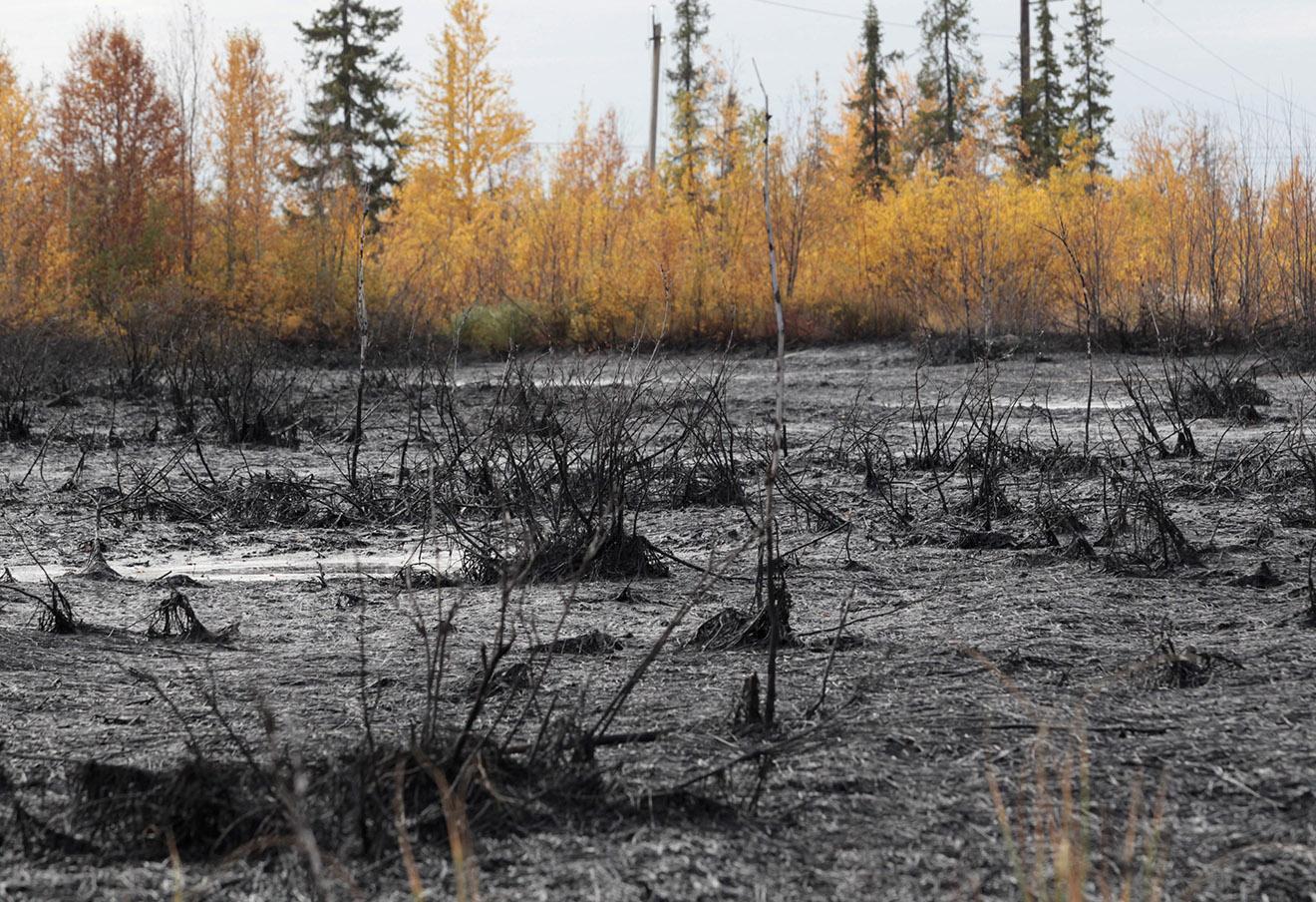 Разлив нефти в окрестностях Усинска.