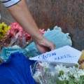 07 Египет Россия авиакатастрофе 1101