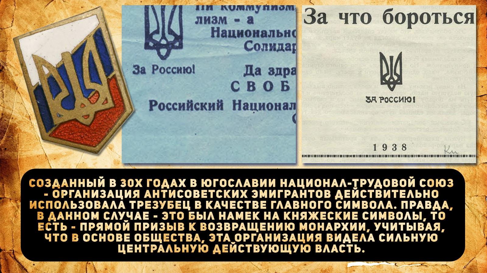 313d7c5fc398.jpg