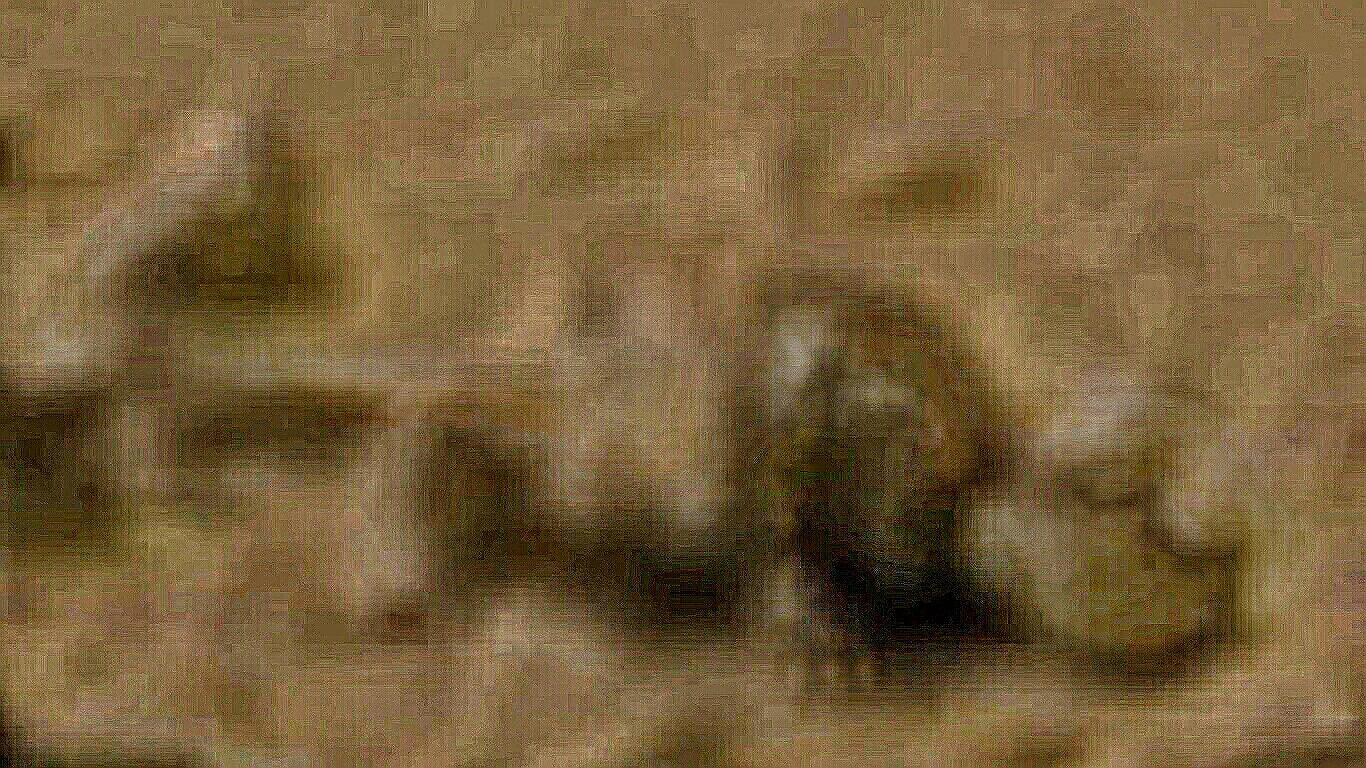 8c5a0068c621.jpg
